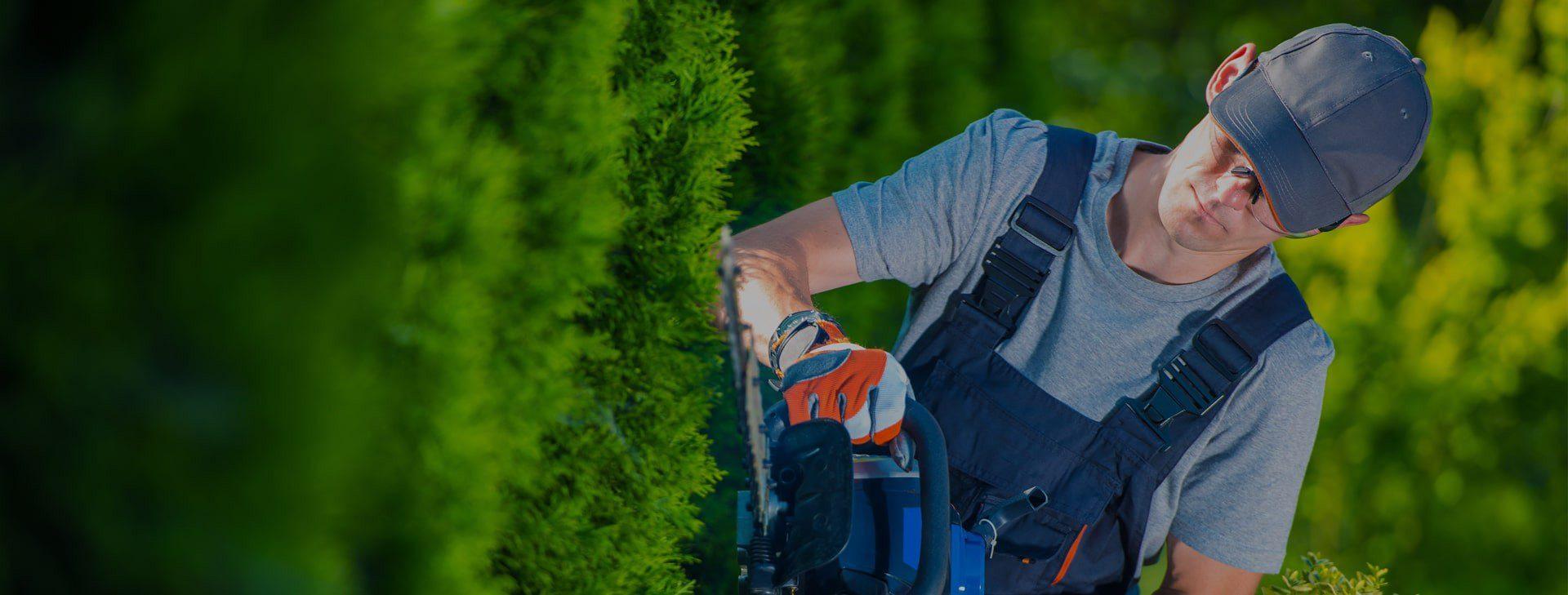 تمیزی درختان و چمن مکان شما<br /> با بهترین تجهیزات روز
