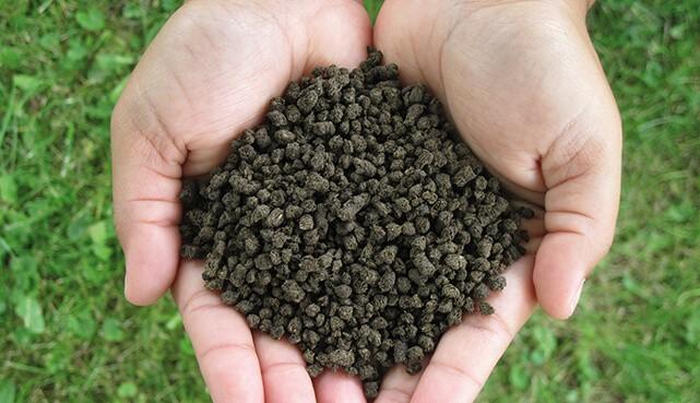 پخش انواع کودهای حیوانی و شیمیایی و ارگانیک